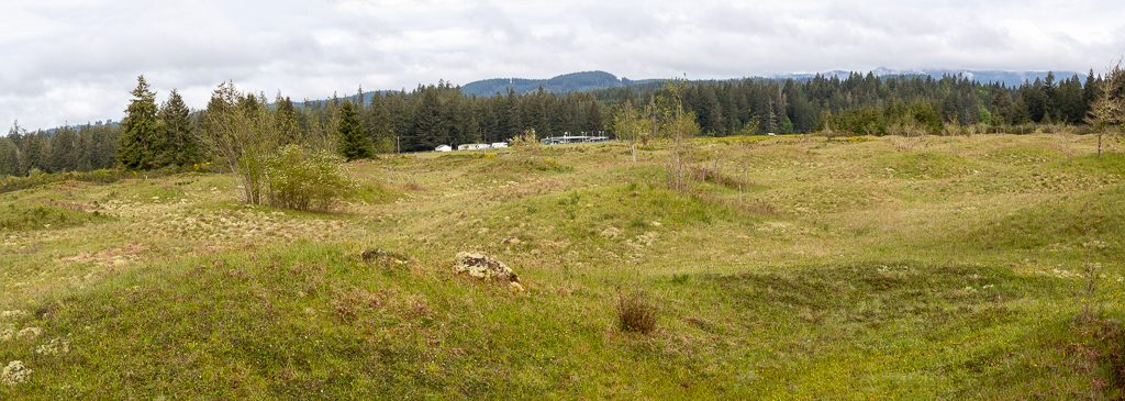 Mima Mounds Panorama 2, photo by Dennis  Plank