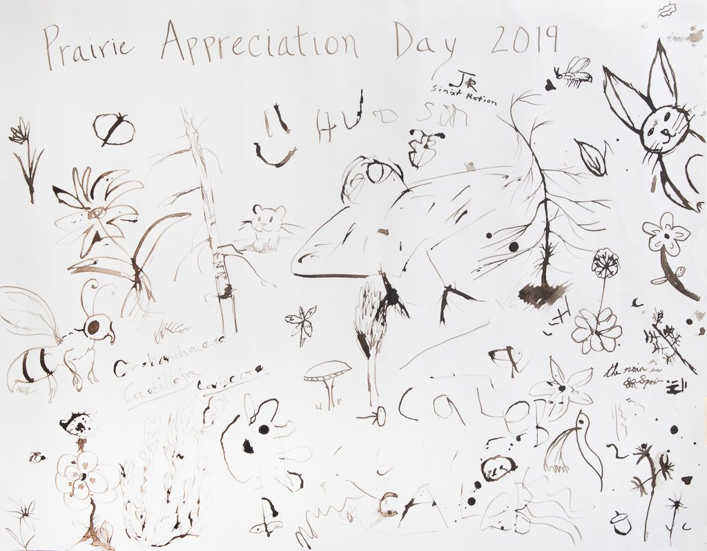Prairie Appreciation Day poster drawn in oak gall ink, Photo by Dennis Plank