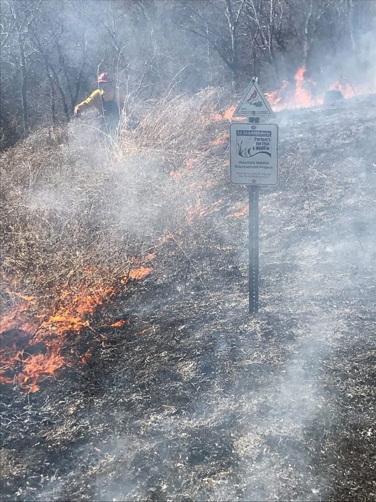 Using prescribed fire to restore native prairie in Illinois; Photo Credit: Nick George/USFWS