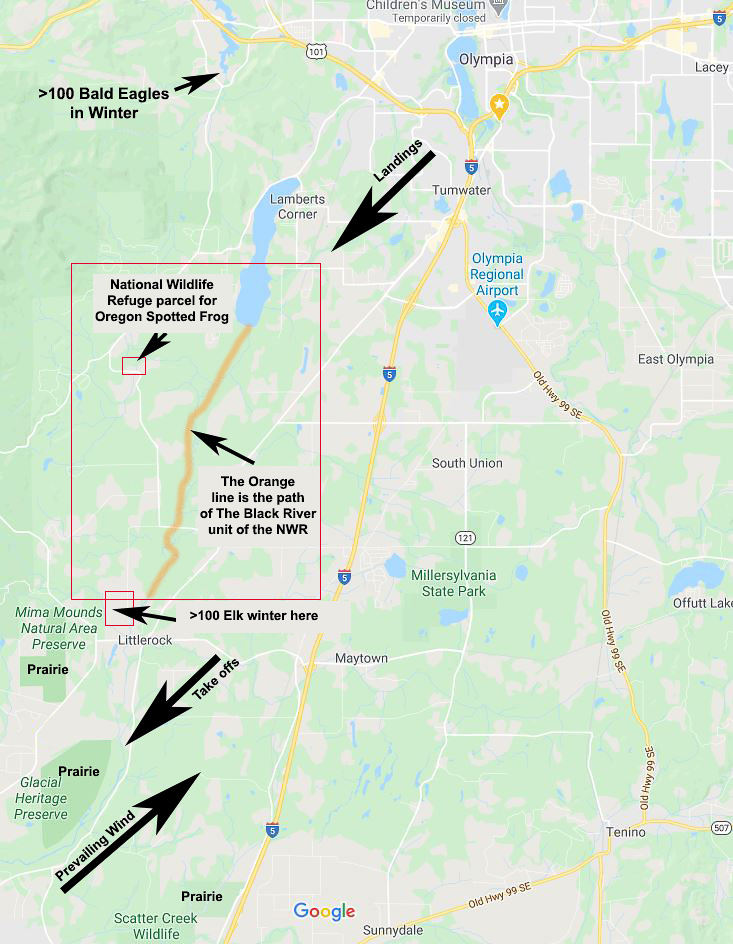Map Showing Proposed Airport Location and Environmental Areas of Concern. Google Maps with annotation by Dennis Plank.
