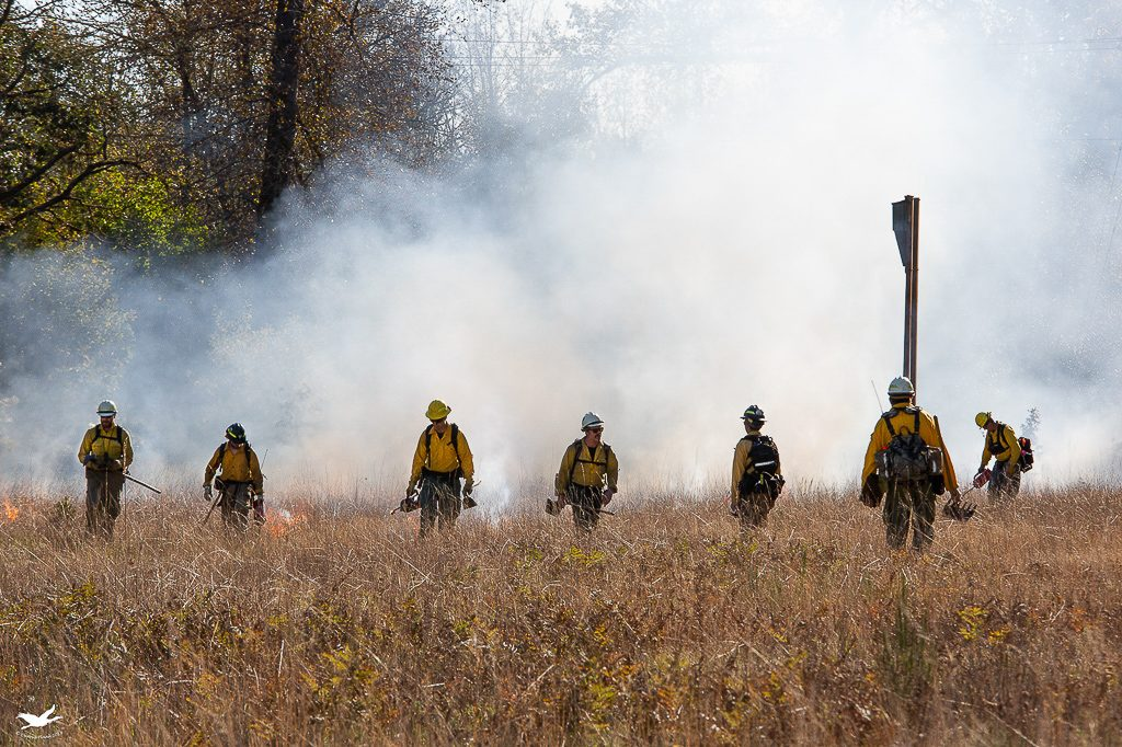 The discipline of a controlled burn.  Photo by Dennis Plank