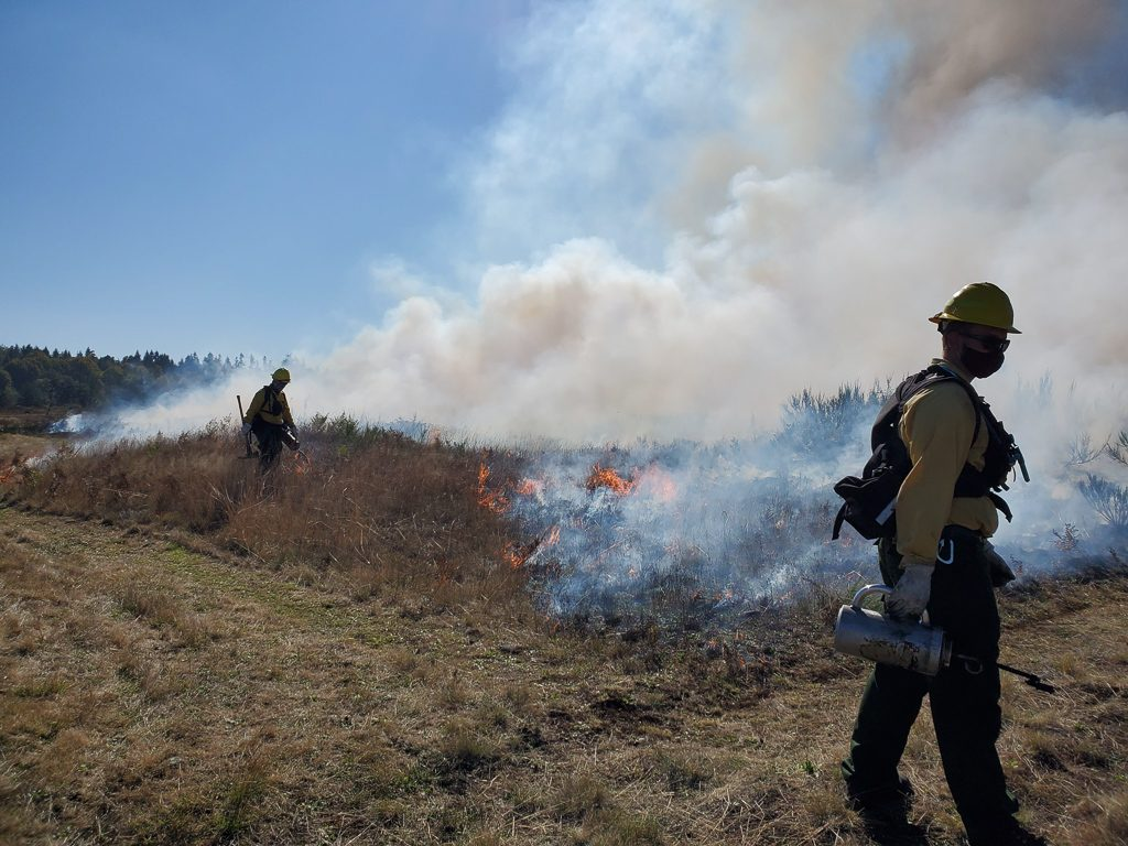 Crews Governing a Prescribed Burn.  Photo by Ivy Clark