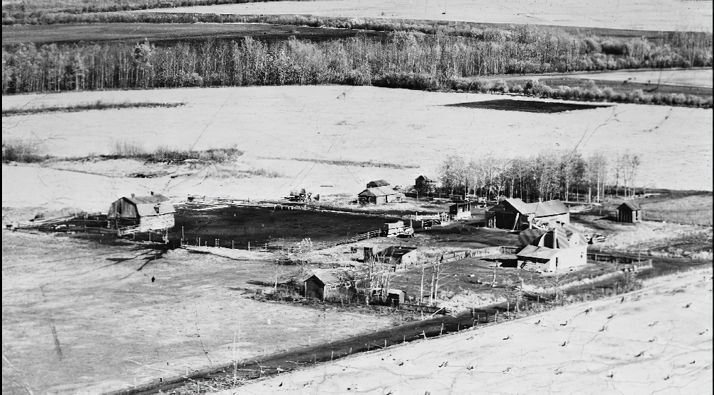 Homestead in western Canada prairie with recently cleared farmland near a tree lined river.  From We Are the Roots.