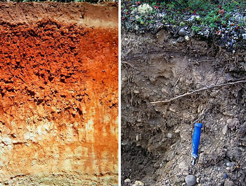 Left: A well-developed soil (Alfisol) with layers of clay and calcium carbonate accumulation (A.R. Aandahl, Soils of the Great Plains: Land Use, Crops and Grasses, University of Nebraska Press, 1982; https://www.uidaho.edu/cals/soil-orders/alfisols#gallery-cbc9288e-2c8a-4900-b81e-210206d4522c--slideshow) Right: A soil that formed in recent outwash in Alaska. (http://web.unbc.ca/~sanborn/Photo_Galleries/Yukon/Stewart-neosol-(nr-Mayo-YT)(L).jpg)
