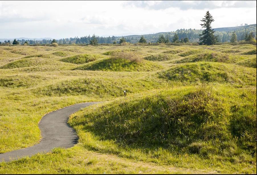 Mima Mounds Natural Area Preserve. (Frank Zack/Shutterstock; https://www.treehugger.com/uncovering-the-mysterious-origins-of-the-mima-mounds-4867783)