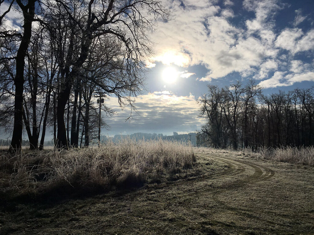Frosty Upper Violet Prairie, Photo by Ruth Mares.