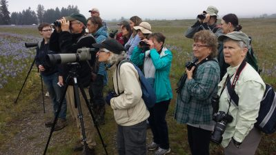 Birders on the loose at PAD 2018!
